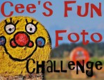 Cee's fun photo challenge